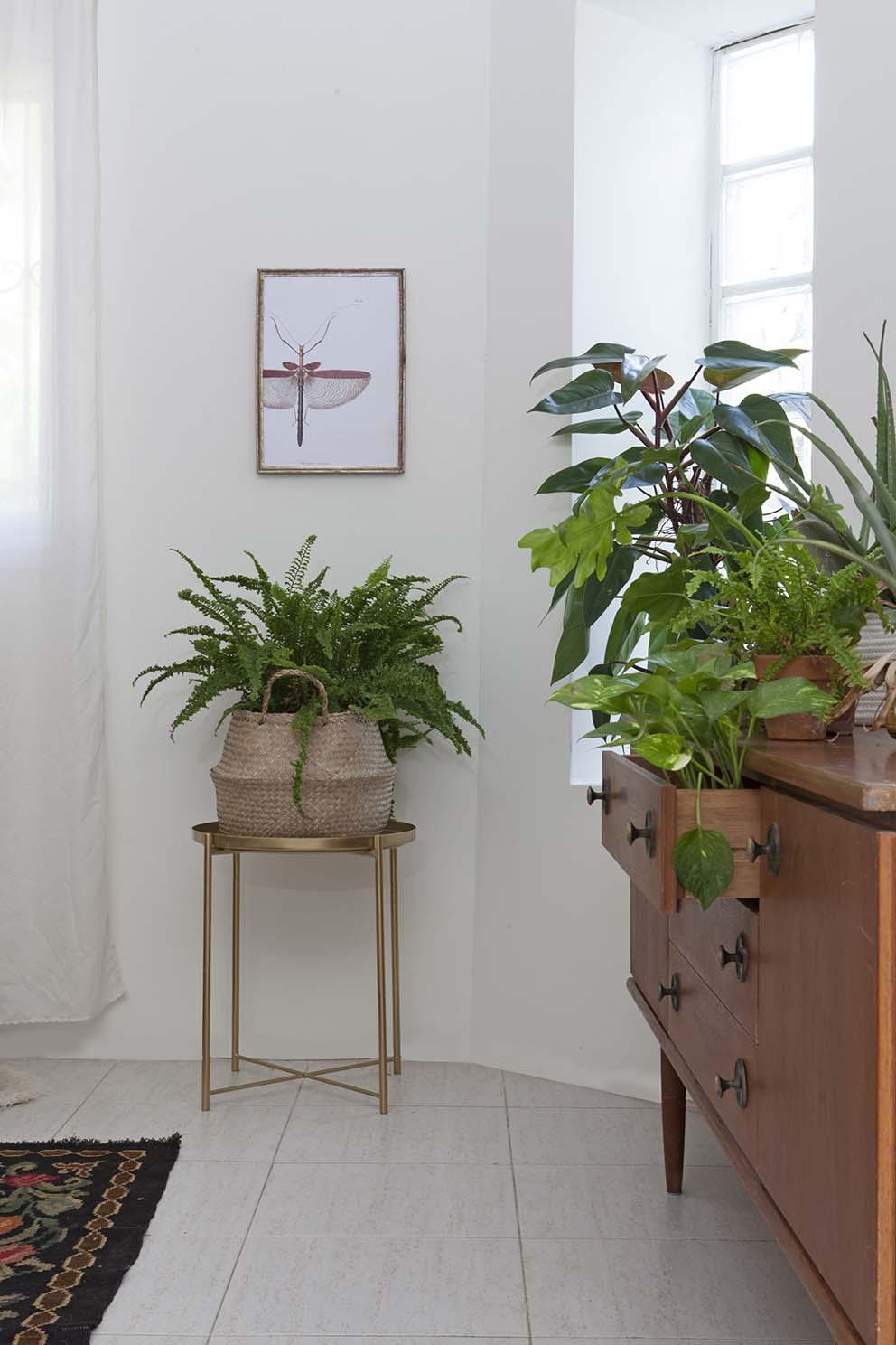 עיצוב: חופית גלעד, צילום: הגר דופלט, www.pnim.co.il